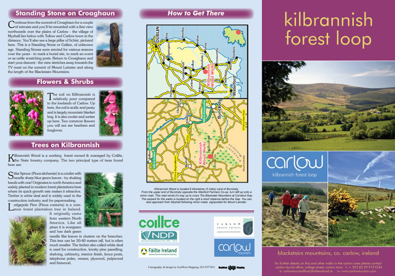 Kilbrannish Forest Loop