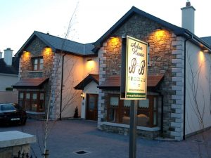 Cosy Carlow Guesthouse