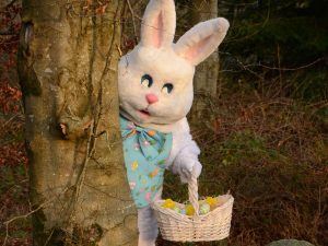Easter bunny at Rathwood