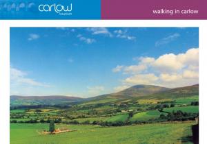 Walking in Carlow