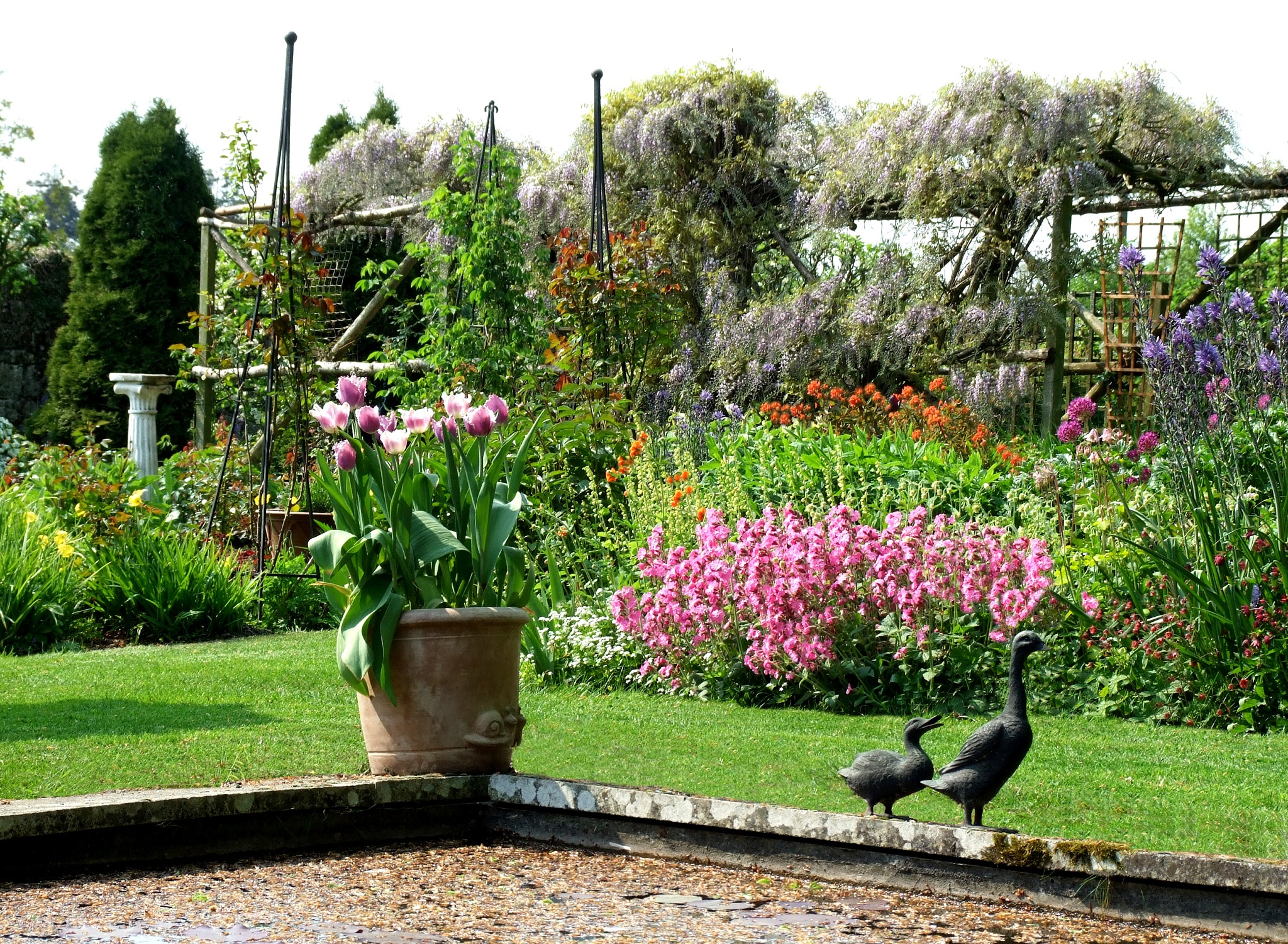 Carlow Garden Trial